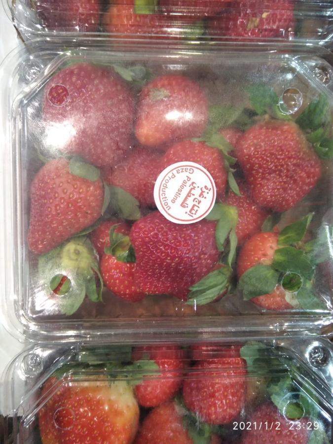 סיכול ניסיון שיווק תותים מעזה_שוק צריפין_ינואר 2020