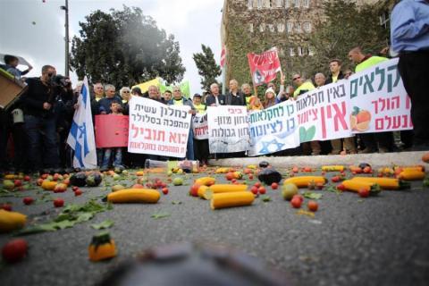 מחאת החקלאים