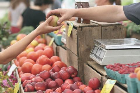 שיווק פירות וירקות