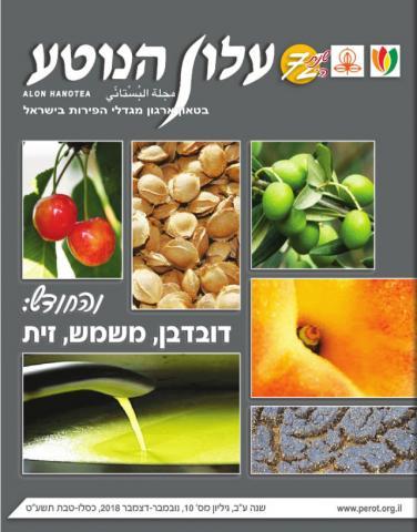 תמונת המגזין