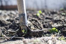 עבודת אדמה